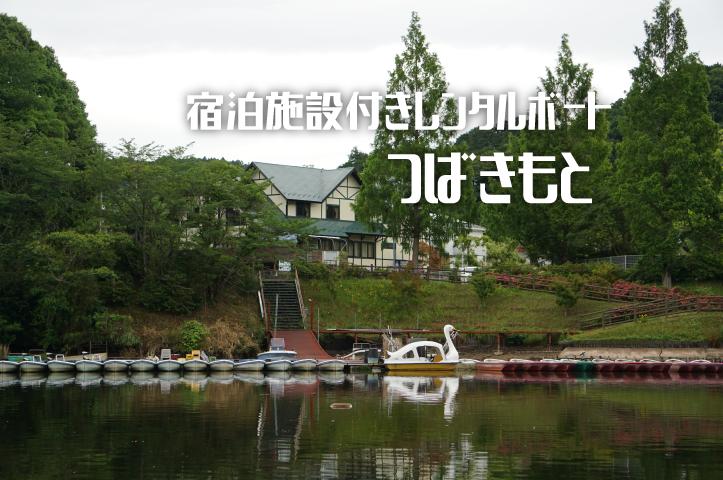 亀山ダム つばきもと